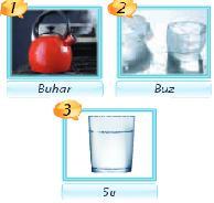 5. Sınıf Fen Bilimleri Madde ve Değişim Testi